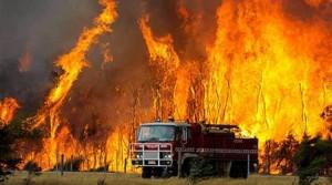 Δεκάδες καταστροφές από πυρκαγιές στην Αυστραλία