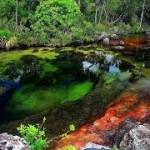 Ο πολύχρωμος ποταμός της Κολομβίας