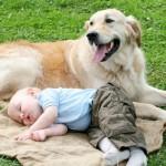 Ο σκύλος είναι ο καλύτερος φίλος του παιδιού