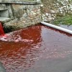 Ποτάμι βάφτηκε κόκκινο μέσα σε μία νύχτα!