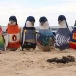 Πουλόβερ για πιγκουίνους!