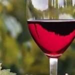 Το κόκκινο κρασί στη μάχη κατά του καρκίνου