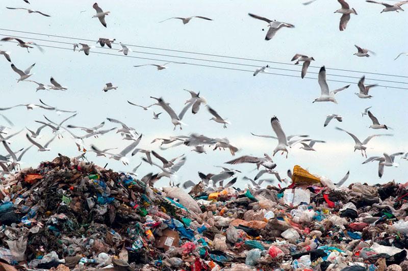 Προκήρυξη διαγωνισμού για Μονάδα Επεξεργασίας Απορριμμάτων στην Κερατέα
