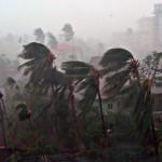 Χρονιά ακραίων φυσικών φαινομένων παγκοσμίως το 2011