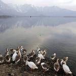 Eίκοσι χρόνια προστασίας της φύσης