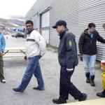 Greenpeace: Συνελήφθη ο γενικός διευθυντής της οργάνωσης