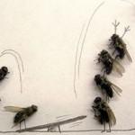 Ξαπόστειλε τις μύγες με φυσικό τρόπο