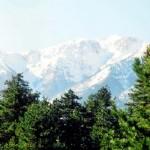 Εθνικό Πάρκο ο Όλυμπος